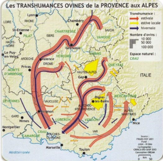 cropped-transhumance-sheep-httparlesmerinos-frenglischtranshumance-html1.jpeg
